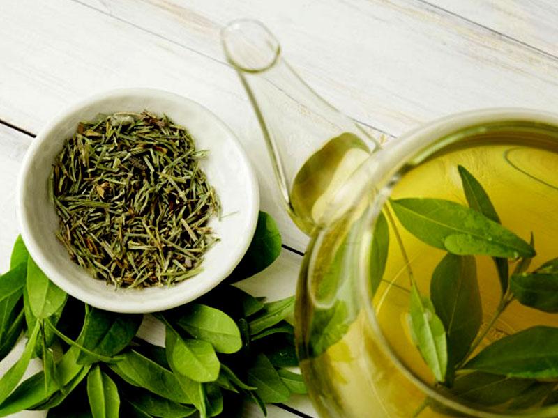 درمان عفونت ادراری با چای سبز